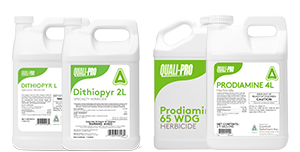 Dithipyr and Prodiamine Products