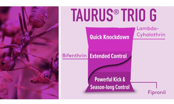 Taurus Trio G Bag