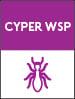 cyper-wsp-additional-detailer