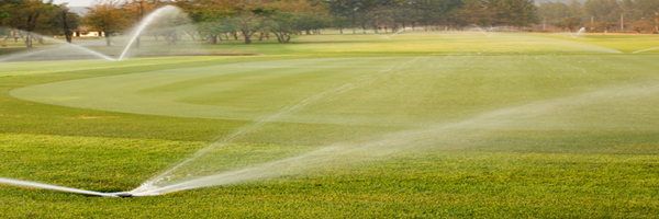 irrigation_picture
