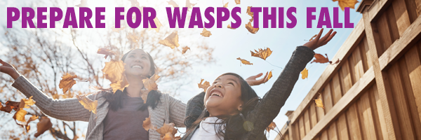 prepare_for_wasps_FALL_graphic