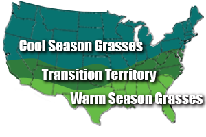 Region_Grass_Map.png
